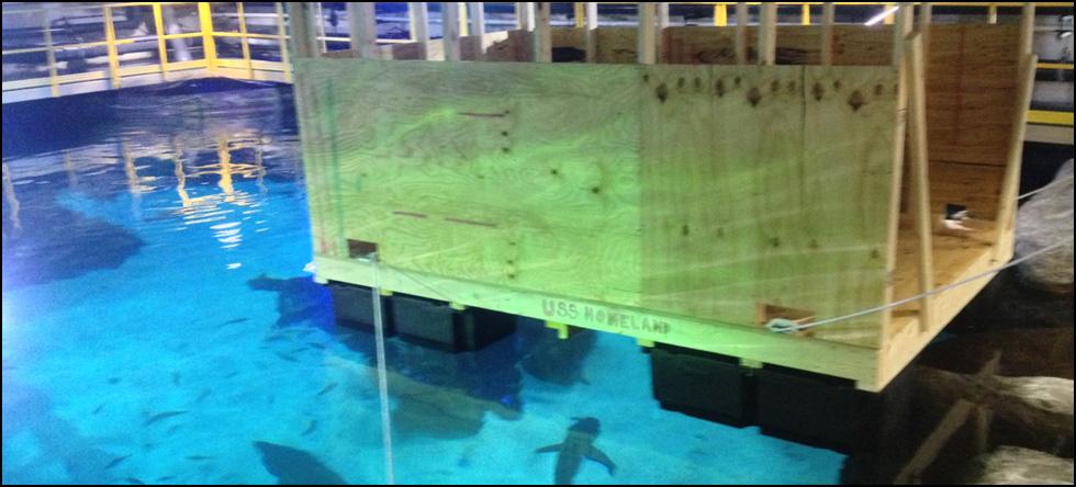 Shark Tank Repair
